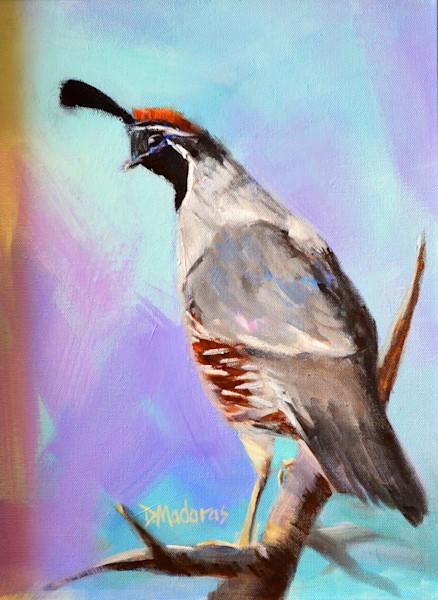 Bird Painting | Southwest Art Gallery Tucson | Blue Quail