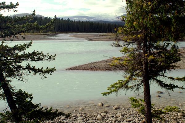 Athabaska River near Jasper, Alberta