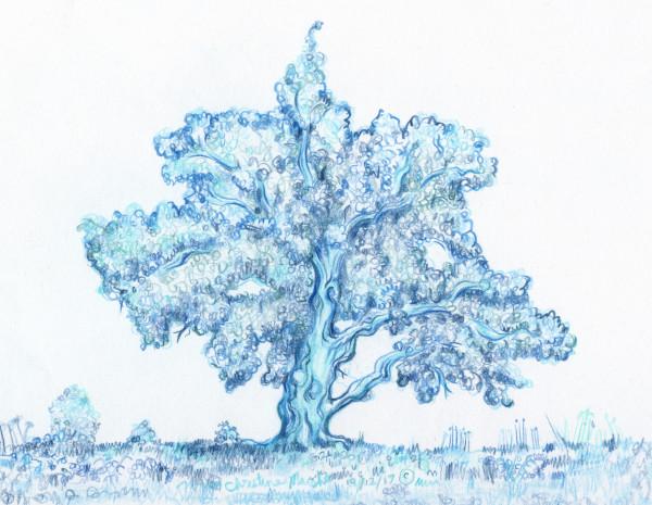 Blue Jupiter Tree