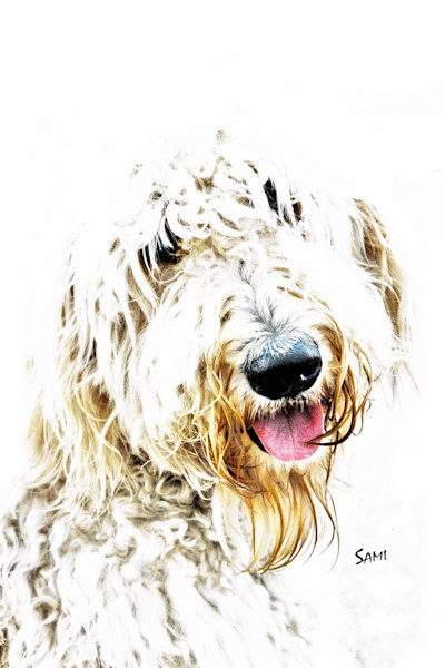 Sami's Art Animal Gallery - Paintings of Domesticated Animals - Pets
