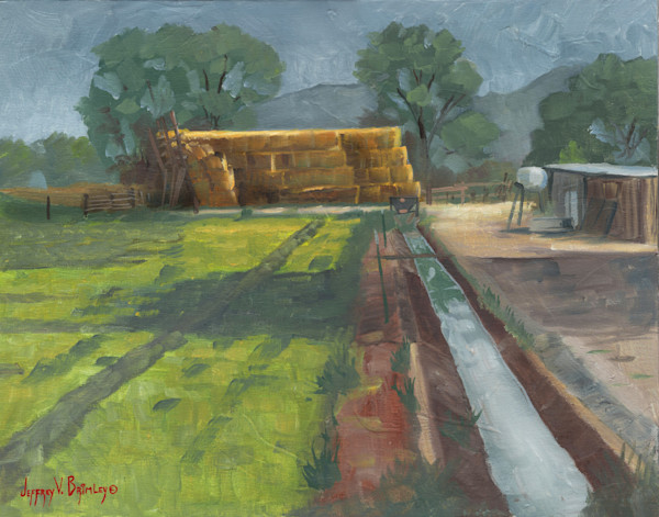 Plein Air original paintings and fine art prints