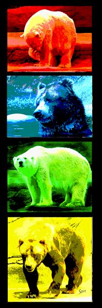 """""""Pop Bears Art for Sale"""""""