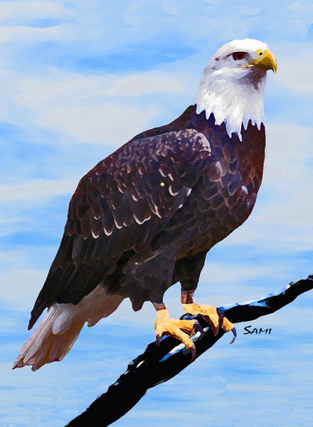 """Eagle Waiting Art for Sale"""