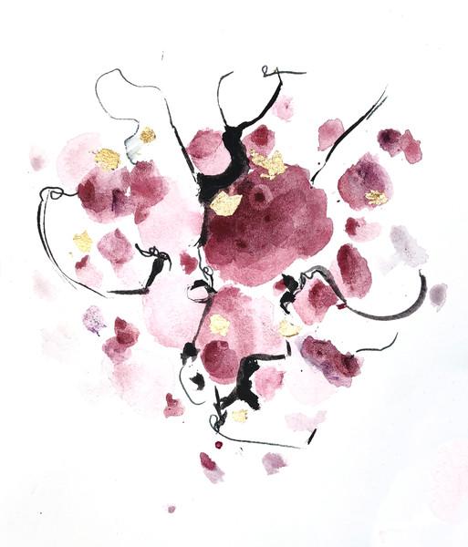 Hibiscus Touches