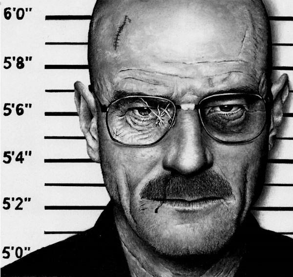 Bryan Cranston - Breaking Bad MUG SHOT
