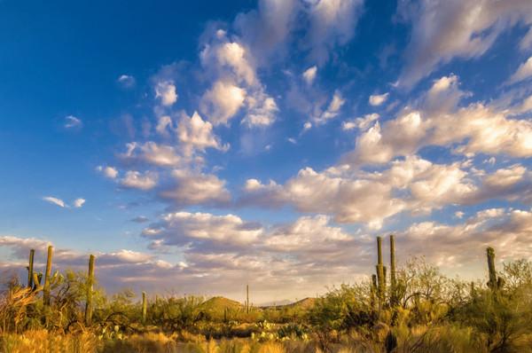 Desert Skies - Tucson, Arizona 2006