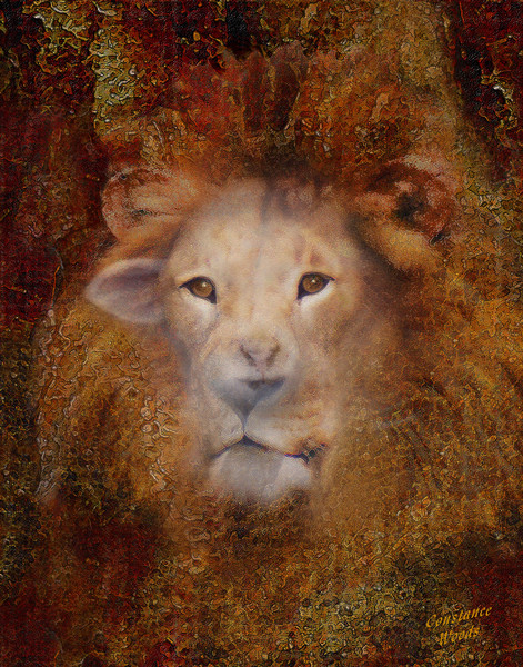 """Lion Lamb Face"" by Constance Woods 