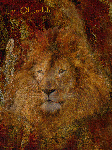 """Lion Of Judah"" by Constance Woods 