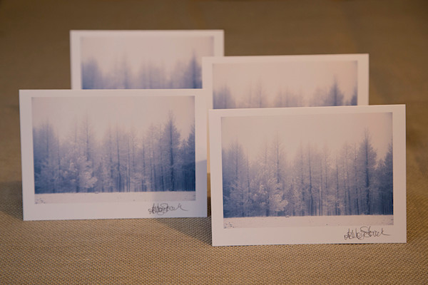 Set of four blank notecards of a snowy sunrise morning in the Malheur National Forest.