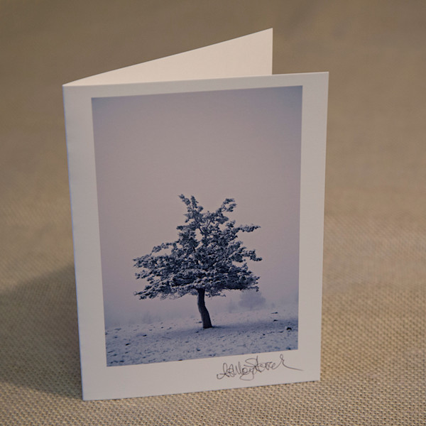 One Lone Juniper Notecard