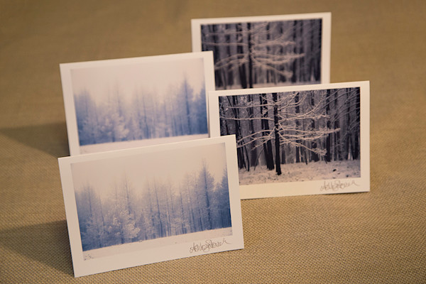 Set of Four Snowy Notecards, Two of each