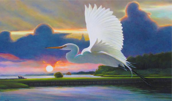 Great White Egret Sunrise A