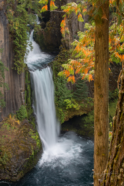 Autumn trees and Tokatee Falls photo for sale by Barb Gonzalez Photography.