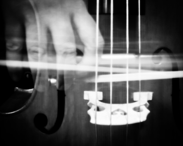 Pinhole Cello 2
