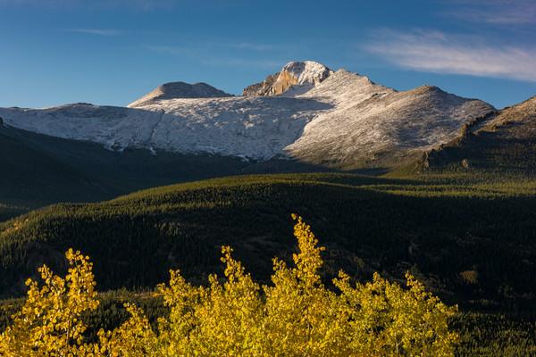 Photo of Snow Capped Longs Peak Framed by Golden Aspen Trees - RMNP