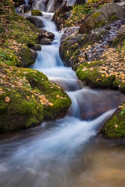 Photo of Boulder Brook in Autumn - Rocky Mountain National Park
