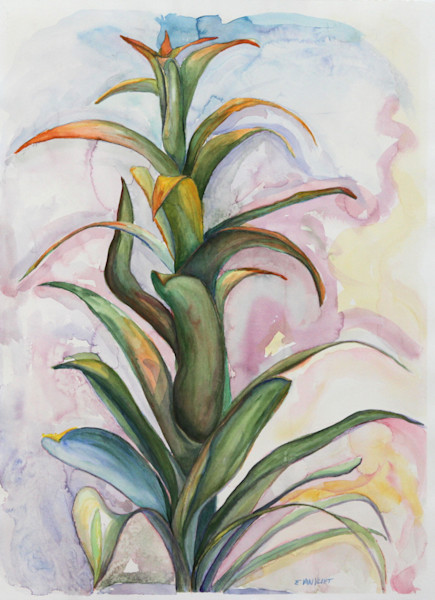 Watercolor bromeliad painting
