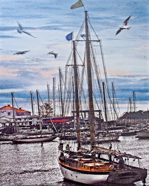Sailing Dreams - Camden Maine - art painting for sale