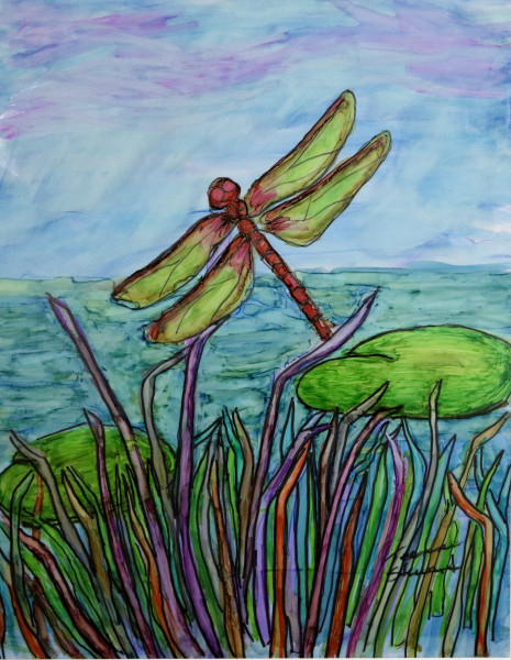 Dragonfly, Dragonfly Drawing, Fine Art and Paintings for Sale by Teena Stewart of Serendipitini Studio