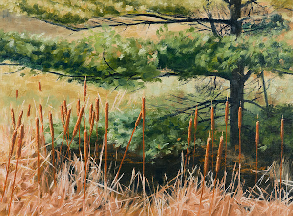 Raymond Wattenhofer Oil Painting Cattails and Needles