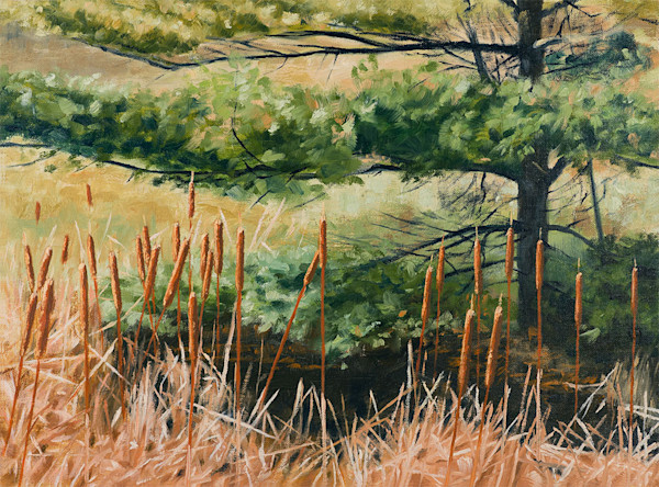 Raymond Wattenhofer Limited Edition Print Cattails & Needles