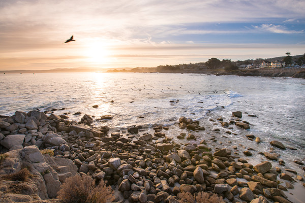 Early Morning Pacific Grove