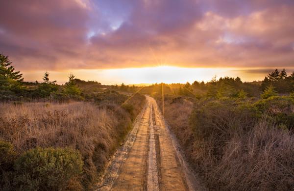 Take A Chance California Dirt Road LOA-1647