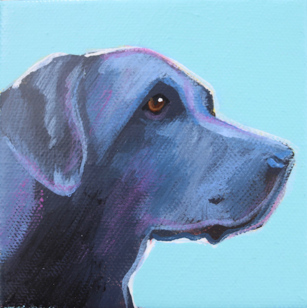 MINI Blue Seafoam Black Lab #2 4 x 4
