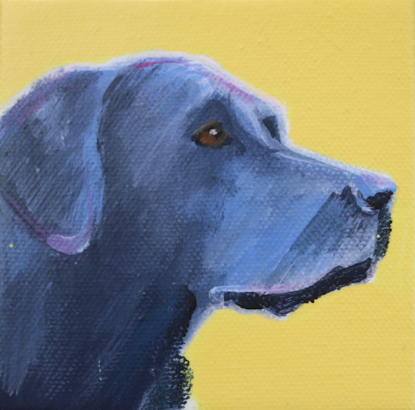 MINI Sunshine Yellow Black Lab #1 -  4 x 4
