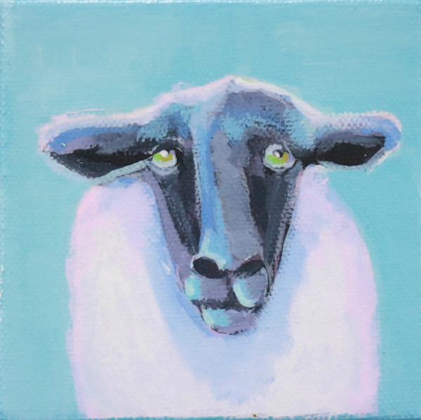 "MINI ""Martha"" Suffolk Sheep on Blue 4 x 4"