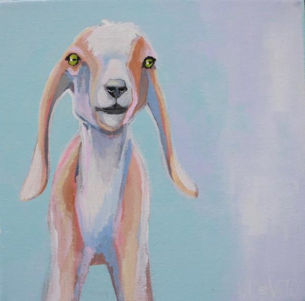 """MAXI  - """"Jenny"""" Baby Goat 8 x 8"""