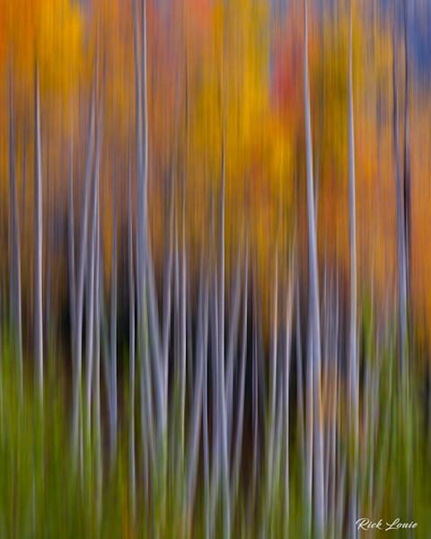 Colorado Fine Art Landscape Images