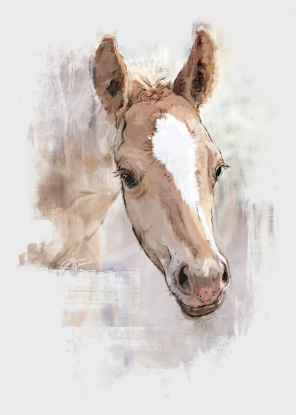 Spring Foal Face Print