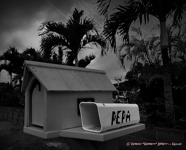 """Pepa"" is where the daily paper went. Black and white image - while walking home one evening.Robert Abbett Kailua Hawaii Art!"