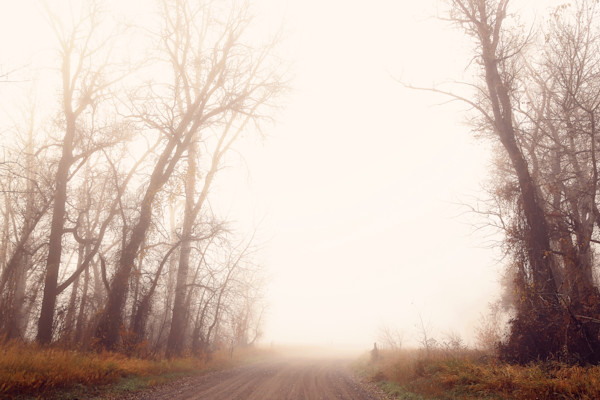 Follow the Foggy Dirt Road