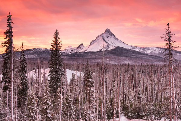Washington's Sunrise (171979LNND8) Mt. Washington Photograph for Sale as Fine Art Print