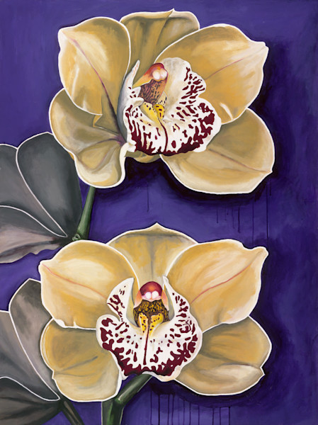 Orchids for Everybody - Original