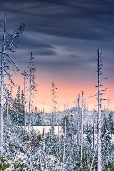 Snowscape Sunrise (171983LND8) Photograph for Sale as Commercial Product or Digital Licensing Only