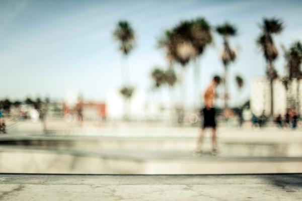 Venice Skateboarders
