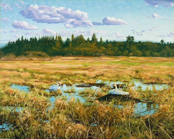 Raymond Wattenhofer Art Print Marsh Life On Canvas Or Paper