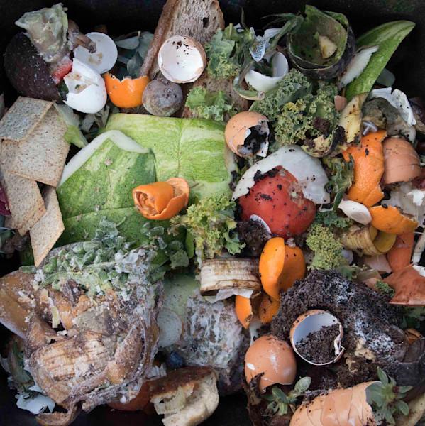 Compost Composition: Orange Rinds