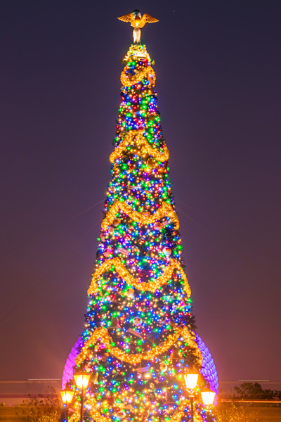 Christmas Tree at Epcot - Disney Art Gallery | William Drew