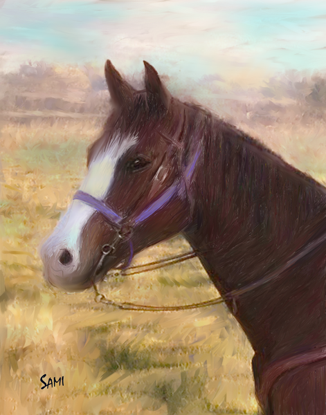 A Horse Portrait - Easy art painting for sale