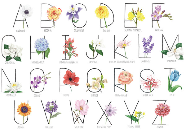 Botanical Alphabet - Horizontal