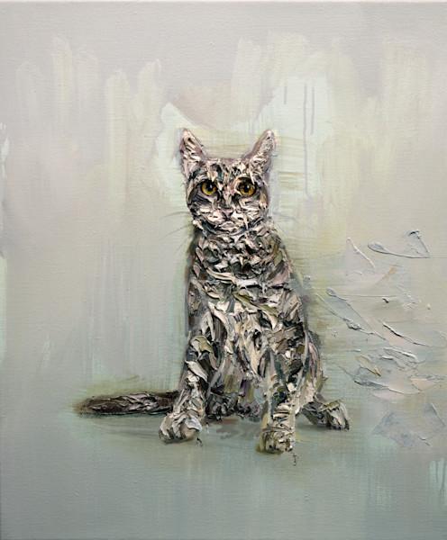 Cat by Mathieu Laca