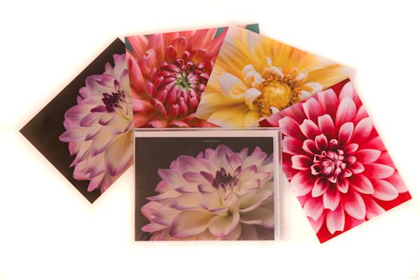 Dahlia Collection Notecards
