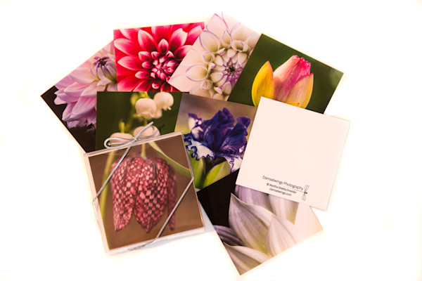 blooming gift enclosures and tags