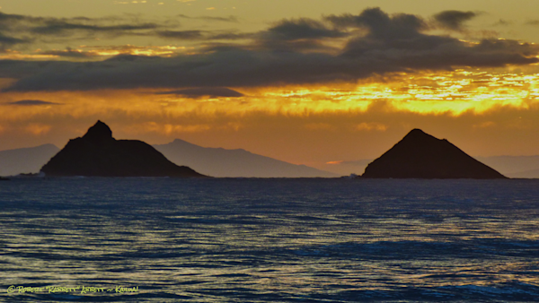 The Mokes With Maui and Moloka'i
