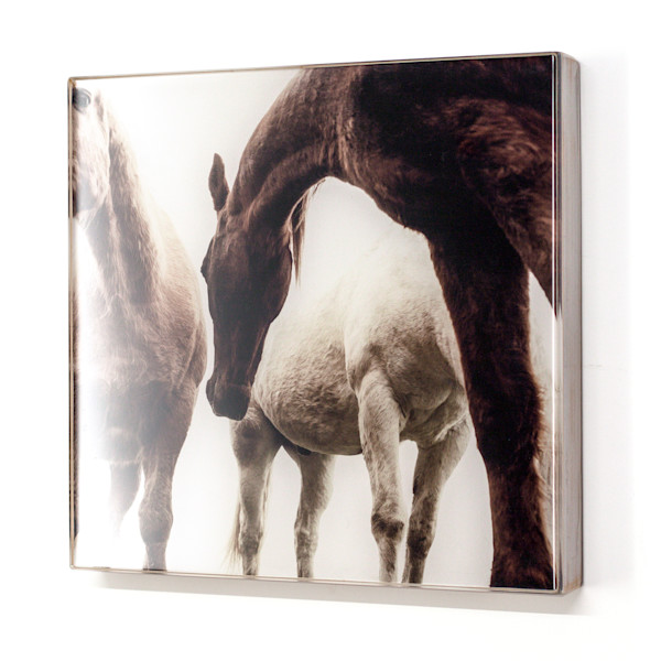 Three Horse 12x12
