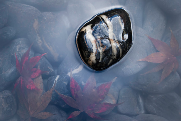 pebble ponds, Japanese art, photographs of water reflections, nature photographers,